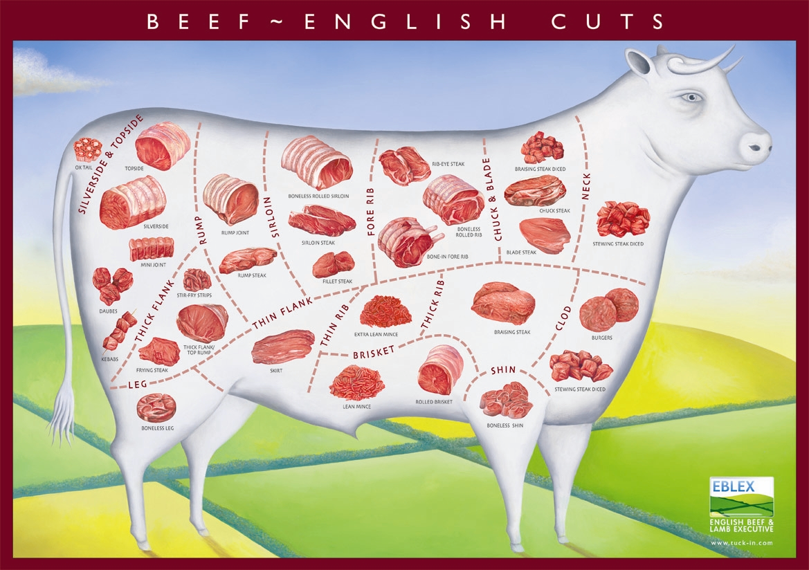 Beef cuts available from a cow's carcass